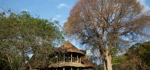 October School Holiday at Katavi Wildlife Camp